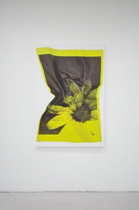 Riccardo Previdi, Test (Yellow Flower), 2010