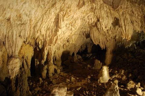 La grotta del Romito a Papasidero