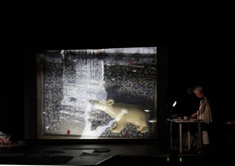 Joan Jonas -Reanimation, Documenta 13 2012. Foto Maria Rahling