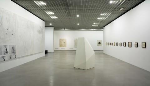 La mostra di Sarmento a Torino - photo Robino