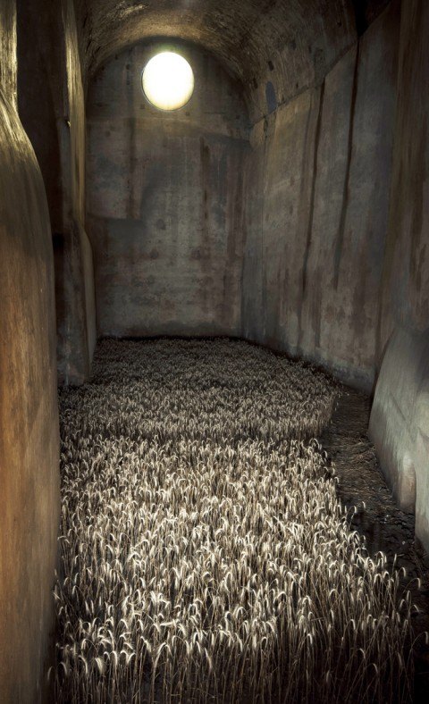 Gian Maria Tosatti, My dreams, they'll never surrender (2014), Castel Sant'Elmo, Napoli_veduta dell'installazione