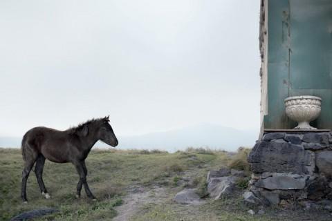 Silvia Camporesi, Journey to Armenia