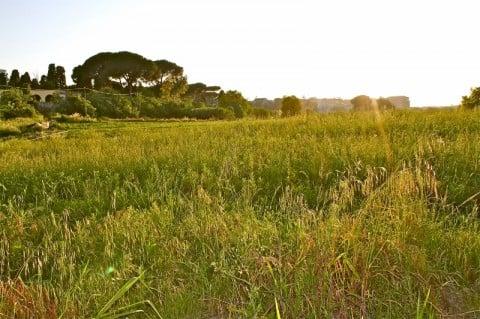 Borgo Piccolomini