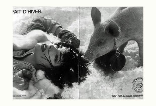 Jeff Koons, Fait d'Hiver (1988), l'opera accusata di plagio