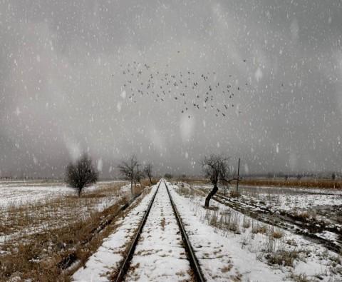 Nuri Bilge Ceylan, Winter Sleep