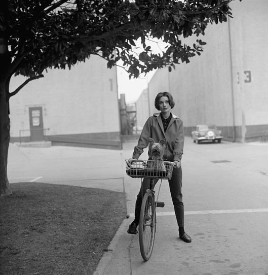 Audrey Hepburn with her pet dog, Famous, on Paramount's backlot in 1957 - © Sid Avery : mptvimages.com