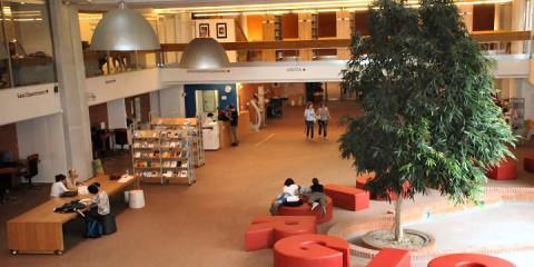 Biblioteca di San Giorgio, Pistoia