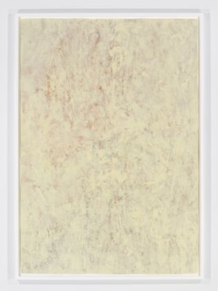 Pamela Rosenkranz, Everything is Already Dead (Fanta and Nigerian Peony White), 2012 - Courtesy the artist and Miguel Abreu Gallery, New York