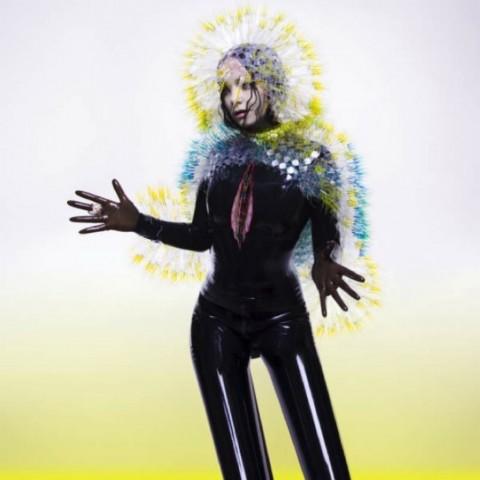 Björk, Vulnicura (2015)
