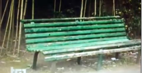 Uno still del video che mostra lo stato di abbandono dell'Hortus Conclusus di Paladino