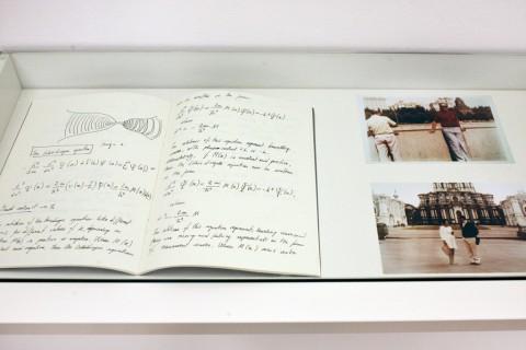 Eva Frapiccini - Museo Caneira - veduta della mostra presso la Galleria Alberto Peola, Torino 2011