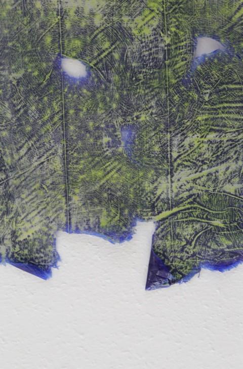 Maria Giovanna Drago, Untitled Paintskin, 2013 - pittura acrilica, 60x115 cm