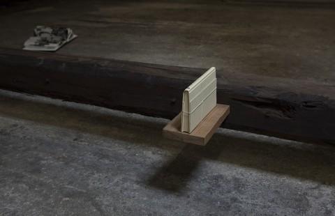 Stefano Arienti, Lo strano caso del Dr. Jekyll e del Sig. Hyde, 2007 - Courtesy l'artista