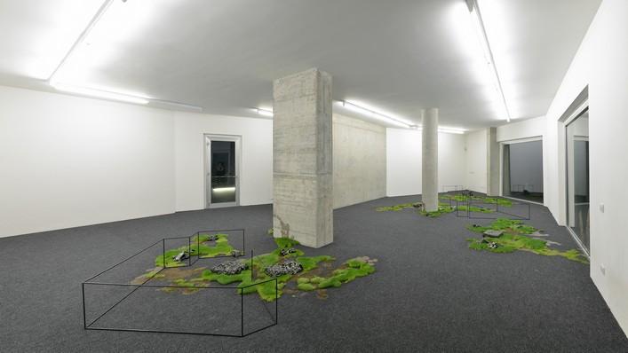 Rochelle Goldberg – The Cannibal Actif - veduta della mostra presso la Galleria Federico Vavassori, Milano 2015