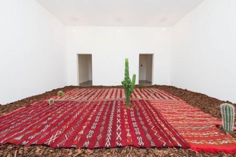 Fiamma Montezemolo, Le tre ecologie - Magazzino d'Arte Moderna, Roma 2015