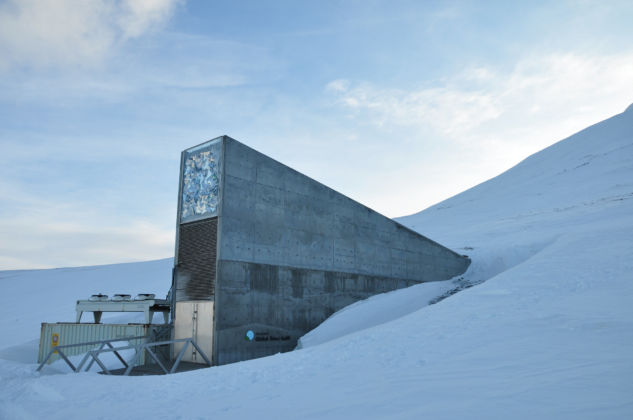 MAXXI. FOOD Dal cucchiaio al mondo, Global Seed Vault_04, Peter W. Soderman, Global Seed Vault - Banca mondiale dei semi di Svalbard, Spitsbergen, Norway, 2008, credit Cary Fowler - Global Crop Diversity Trust