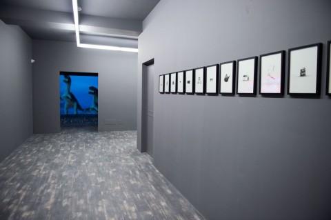 Museo Pino Pascali, Polignano a Mare 2015 - Raffaele Fiorella