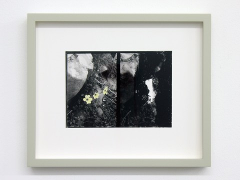 Uriel Orlow, Double Vision