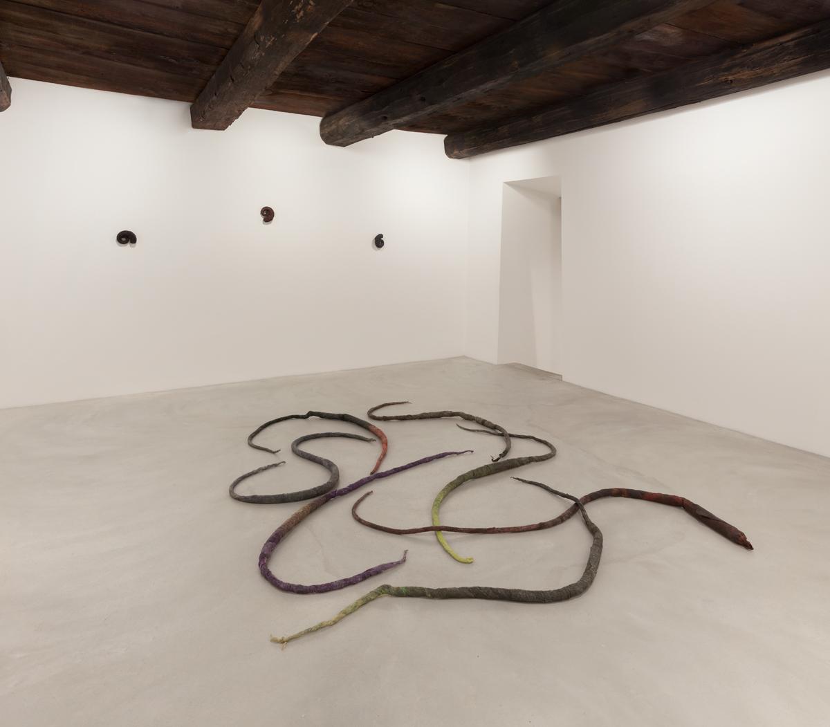 Lupo Borgonovo – Willow pillow – veduta della mostra presso la Galleria Monica De Cardena, Zuoz 2015