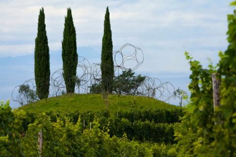 Yona Friedman, Vigne Museum