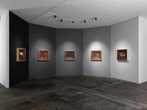 Steven Claydon – Analogues, Methods, Monsters, Machines - veduta della mostra presso il CAC, Ginevra 2015 - photo Annik Wetter