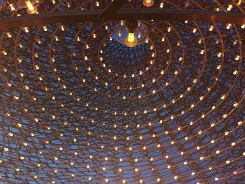 Veduta notturna del padiglione del Regno Unito all'Expo di Milano (foto Anna Mattioli)