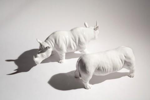 Antonio Riello, Rhino, 2015