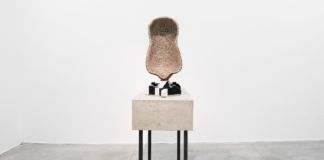 Benedikt Hipp - The Educated Monkey – veduta della mostra presso Monitor, Roma 2015 – photo Massimo Valicchia – Courtesy the artist & Monitor, Roma-New York