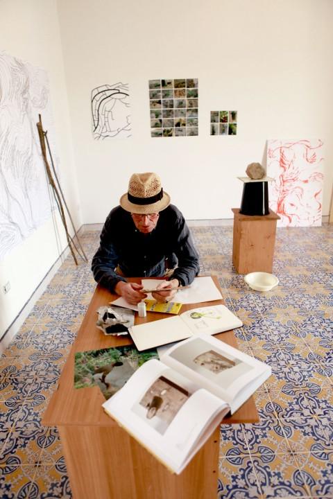 Ficarra Contemporary Divan - Lois Weinberger