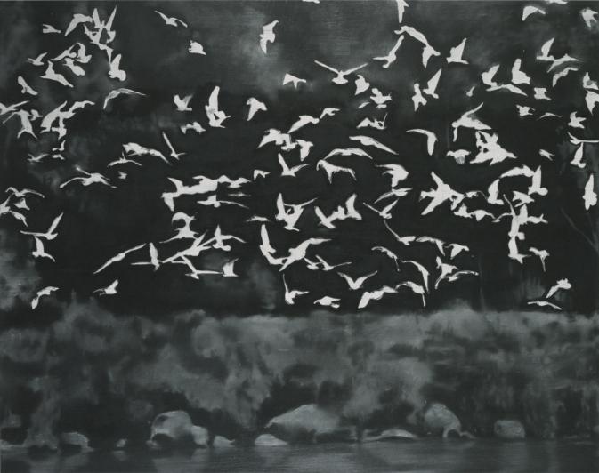Gerhard Richter, Vögel, 1964