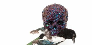 Jan Fabre, Skull with magpie, 2001