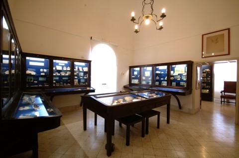 Museo del Centro Caprense, Sala Geo-paleontologica