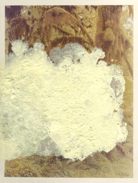Franco Guerzoni, Dentro l'immagine, 1975. Cristalli di zolfo su fotografia originale