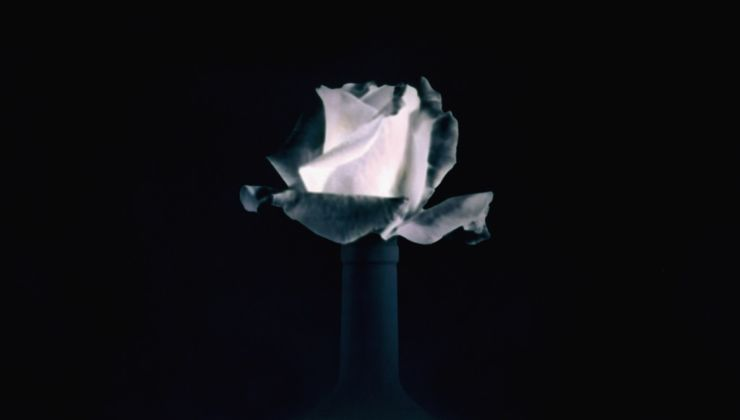 Paolo Mussat Sartor, Rosa, 1991-92