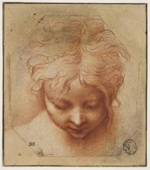 Parmigianino, Testa di un bambino - Musée du Louvre, Parigi
