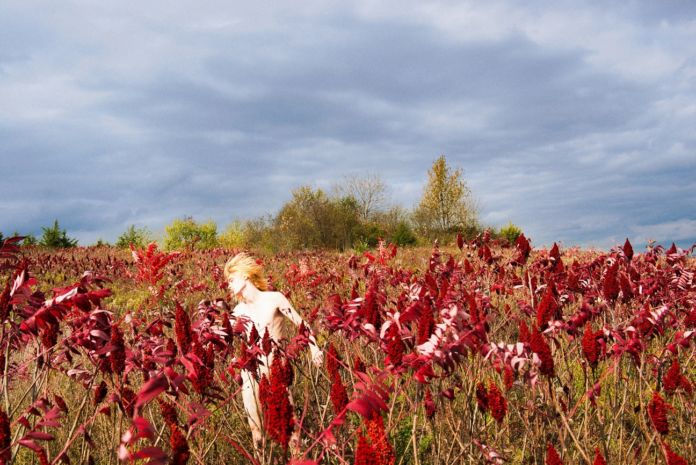 Ryan McGinley, Crimson & Clover, 2015 - Courtesy l'artista e Team Gallery