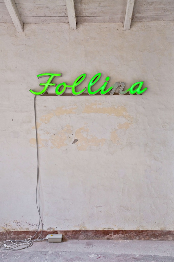 The Strange Days - Folli(n)a