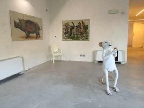 Biennale Disegno Rimini 2016 - Ericaeilcane
