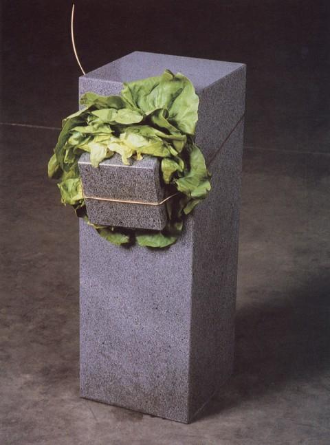 Giovanni Anselmo, Senza titolo (Struttura che mangia), 1968