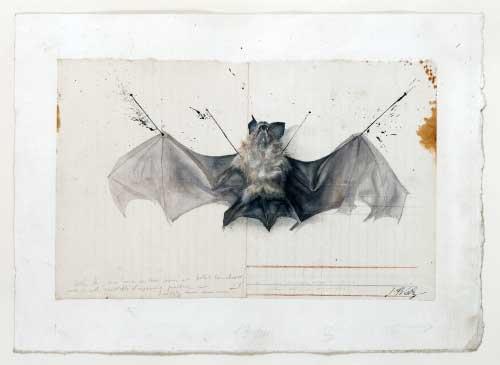 Jean-Pierre Velly, Toi la rapide la zigzagante, 1980 - matita tempera, acquerello su carta - Collezione Sette Daniele