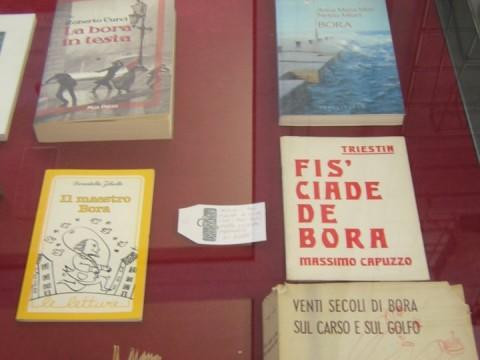 Libri dall'archivio multimediale del Museo della Bora e del Vento a Trieste