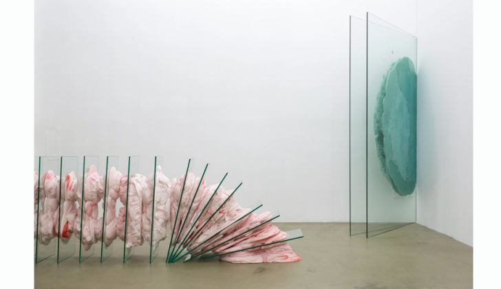 Vera Kox - Fit frame to content - installation view at Ribot, Milano 2016