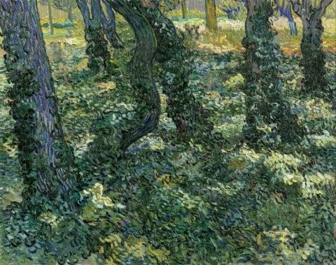 Vincent van Gogh, Sottobosco, 1889