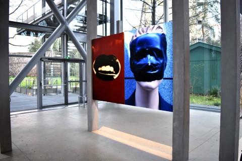 Daido Moriyama – Daido Tokyo installation views at Fondation Cartier, Parigi 2016 - photo Claudia Brivio