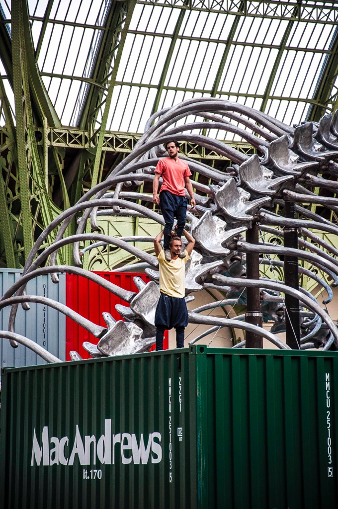 Monumenta 2016 - Huang Yong - Grand Palais, Parigi 2016 - photo Hassene Hamaoui