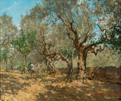 Telemaco Signorini, Uliveta a Settignano, 1885 ca. - coll. privata