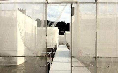 Firenze, The Bridge of Love, Installazione per Pitti Uomo 90, Claudio Nardi Architects