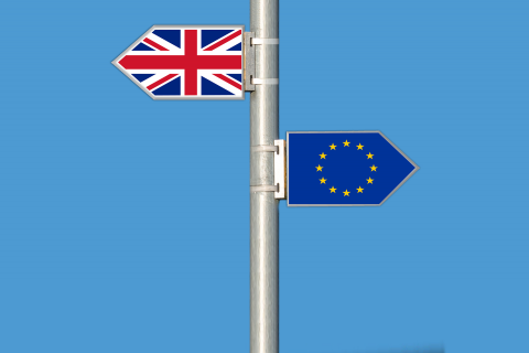 Brexit, leave or remain?