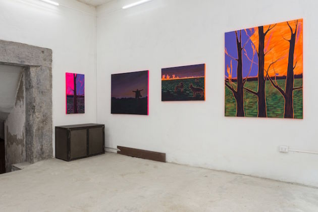 George A. Bidmead – Wild Feats - installation view at Galleria Dino Morra, Napoli 2016