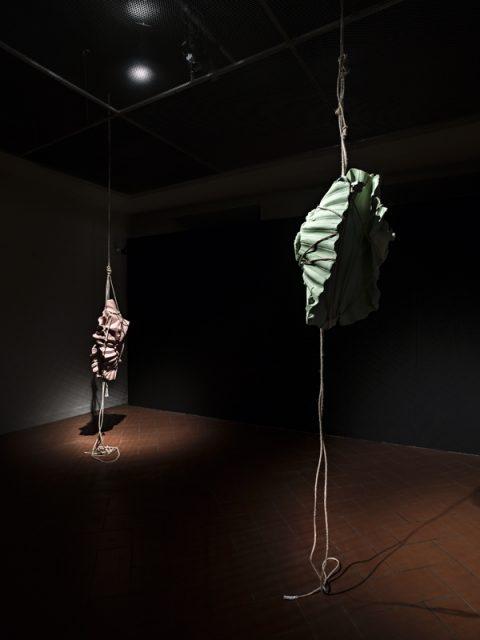Morgane Tschiember, installazione per la Project Room del Palazzo Podestarile